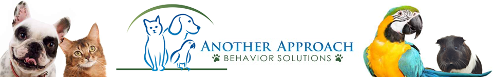 Another Approach Behavior Solutions