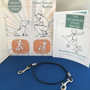 No Brainer Tether Trainer System - Puppy / Small
